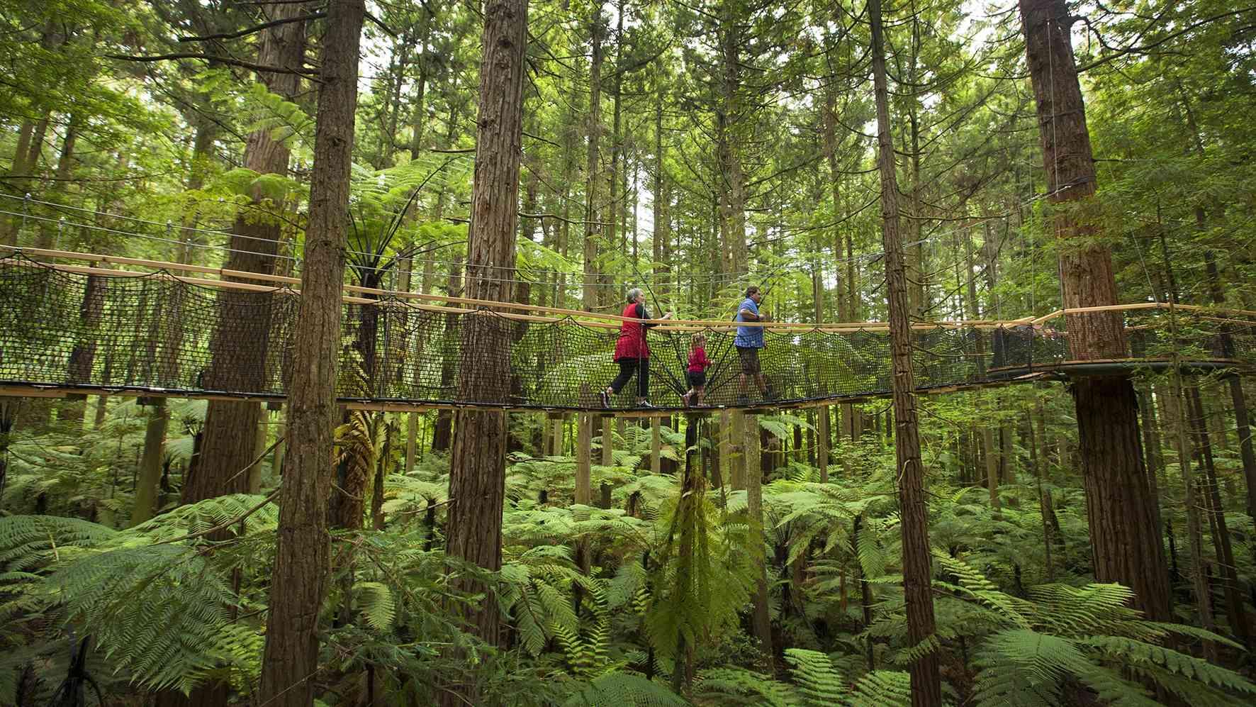 Rotorua things to do in rain