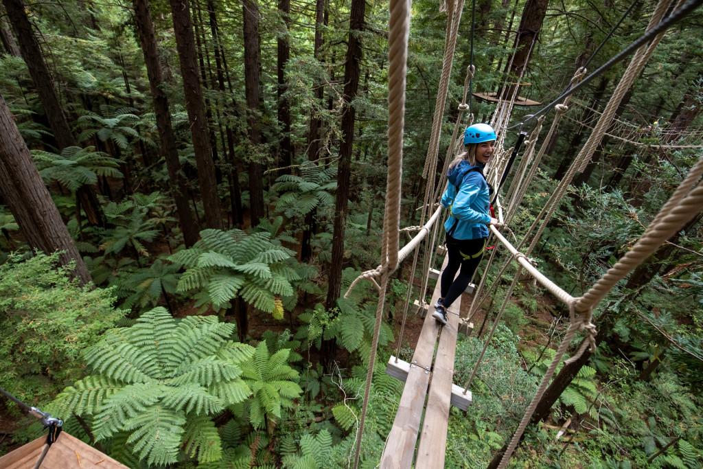 The ultimate tree top adventure in Rotorua