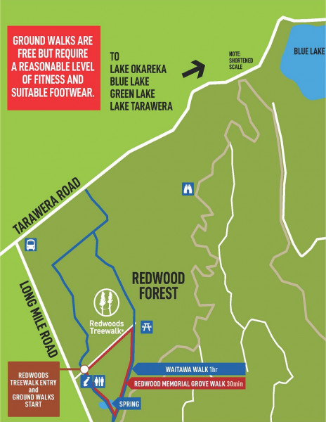 Map of the Redwoods Forest walking tracks